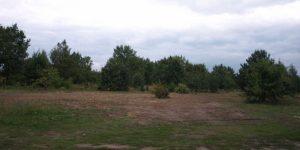 Działka przeznaczona pod budowę targowiska miejskiego w Górze Kalwarii